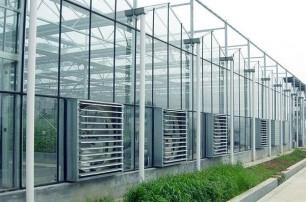 国兴温室土壤培肥技术和方法