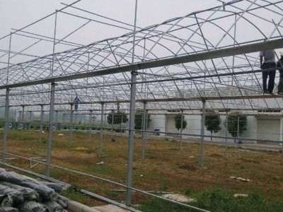 Thin film multi-span greenhouse in Yuncheng, Shanxi