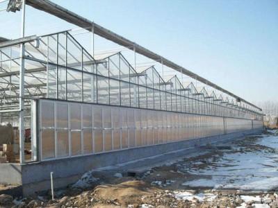 Venlo type sunshine panel greenhouse of Jiaocheng, Shanxi