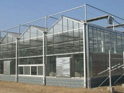 Venlo type sunshine panel greenhouse of Weihai, Shandong