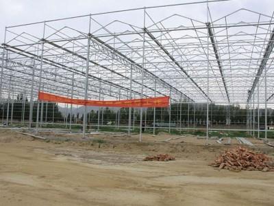 Venlo type sunshine panel greenhouse of Zhengzhou, Henan