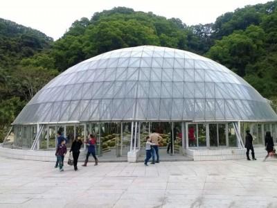 Greenhouse of bird nest